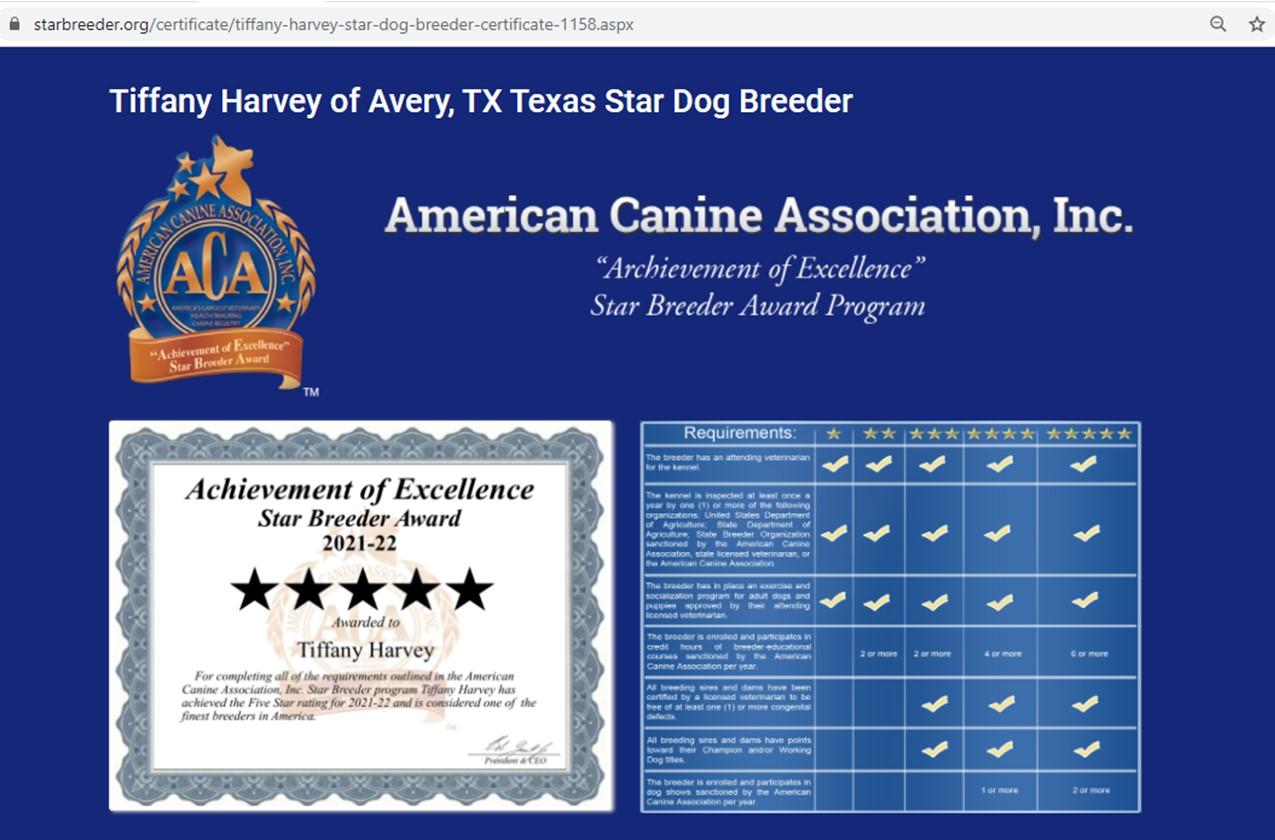 tiffany, harvey, dog, breeder, 5-star, tiffany-harvey, dog-breeder, avery, tx, texas, aussie, australian, shepherd, mix, mini, miniature, aussiedoodles, puppy, mill, puppymill, usda, inspection, records, kennel